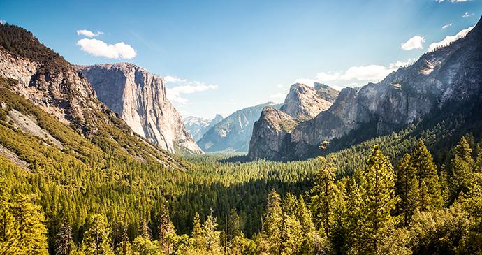 Yosemite National Park California USA Sopotnicki Shutterstock