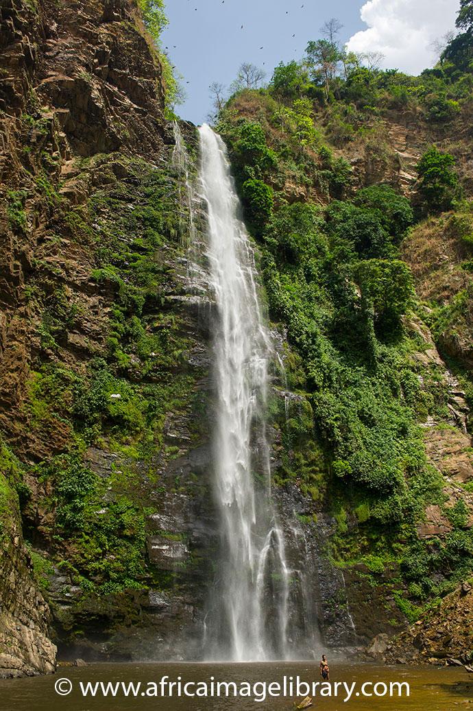 Wli Falls Agumatsa Wildlife Sanctuary Ghana by Africa Image Library