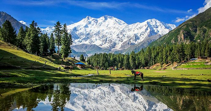 Fairy Meadows Pakistan by Witthawas_Siri, Shutterstock