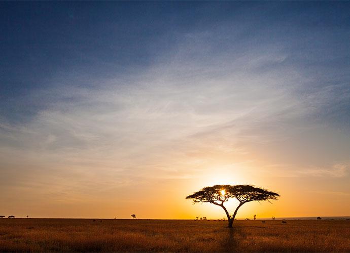 Sunset Serengeti Tanzania by letusgophoto