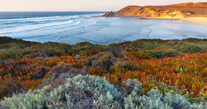 The Alentejo coastline, Dmitry Kornilov, Shutterstock